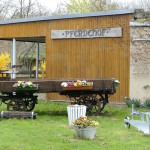 pferdehof südpark merseburg