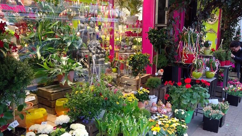Blumenläden, Cafes, Parks und sehr viel Grün. Das bietet euch das Belgische Viertel in Köln