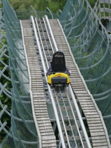 abfahrt sommerrodelbahn wald-michelbach