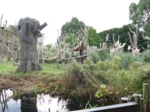 goorillagehege aussen im london zoo